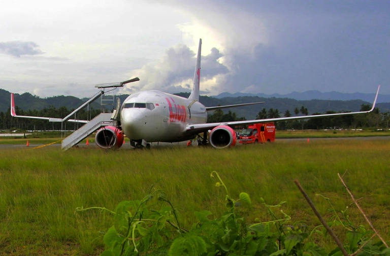 <p>The Lion Air passenger jet is seen in a field after crashing into a cow at Gorontalo airport, on Sulawesi island, on Aug. 7, 2013.</p>