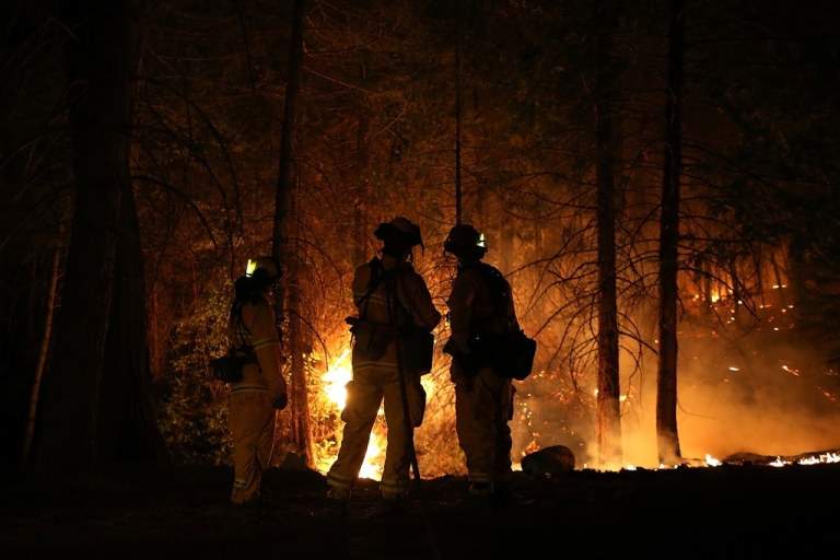 <p>Firefighters from Cosumnes Fire Department monitor a back fire while battling the Rim Fire on Aug. 22, 2013 in Groveland, Calif.</p>