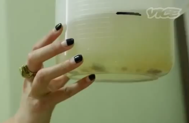 <p>Wine brewed with human feces in South Korea, according to VICE. Some say the video clip created by the media site was