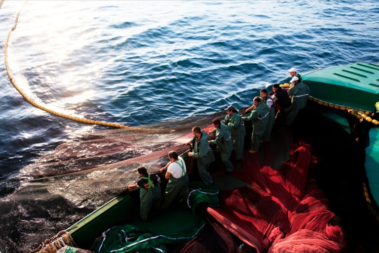 <p>Fishermen pull a net to collect bonitos as they sail on the Black Sea near Zonguldak on Sept. 1, 2013.</p>