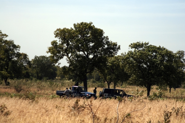 <p>Gendarmes work, on December 4, 2013 in Diago, outside Bamako, in the area where 21 bodies, believed to be the remains of soldiers close to Mali's ousted president Amadou Toumani Toure, have been found the day before in a mass grave.</p>