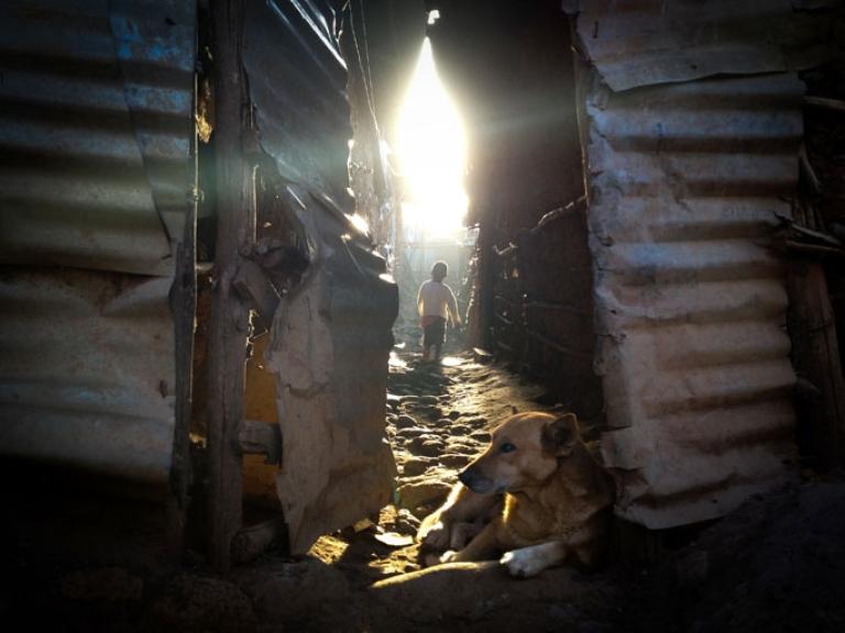 <p>A boy walks outside his home in Kibera at dawn.</p>