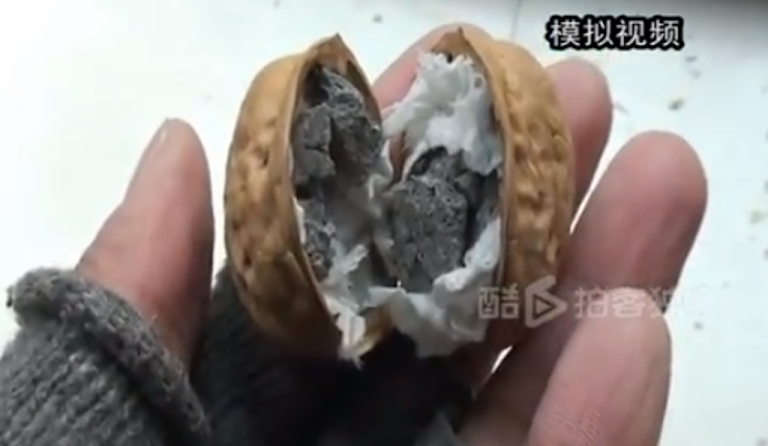 <p>China's latest problem: cement-filled walnuts.</p>