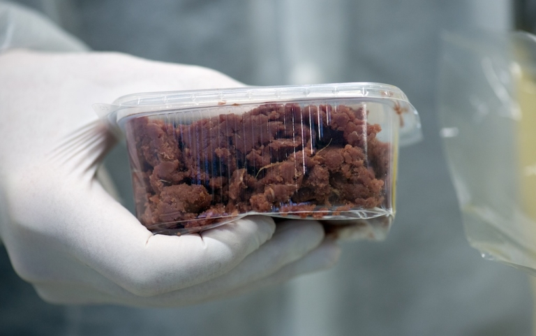 <p>A sample of a meat product is seen in a laboratory to be DNA-tested on February 19, 2013 in Berlin. Horsemeat in 'beef' dishes has now been confirmed in products found in Britain, Ireland, France, Austria, Norway, the Netherlands, Germany, Italy, Spain, Portugal and Belgium.</p>