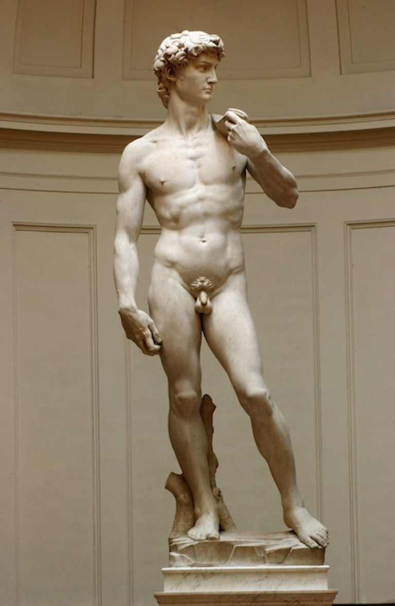 <p>Some residents of a Japanese town want to put underpants on a new replica of Michelangelo's David.</p>