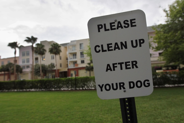 <p>A more direct, but less hilarious way of encouraging pet owners to pick up after their pups.  (Joe Raedle/Getty Images)</p>