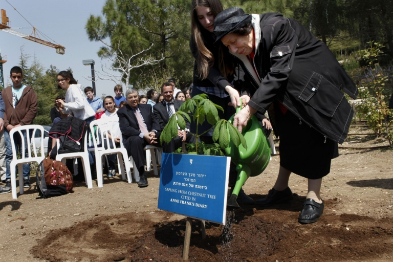<p>Hanna Pick, a Holocaust survivor and a friend of Anne Frank, waters a sapling from the chestnut tree that Anne wrote about in her diary next to the Children's Memorial at the Yad Vashem Holocaust Memorial in Jerusalem on March 26, 2012.</p>