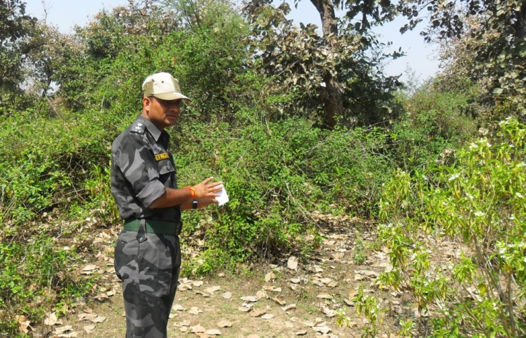 <p>An Indian security official looks over the site that a Swiss woman was raped the night before near Gwalior, 212 miles from state capital Bhopal on March 16, 2013. A Swiss female tourist was gang-raped in rural central India, police said, the latest victim of sexual violence against women in the South Asian nation.</p>