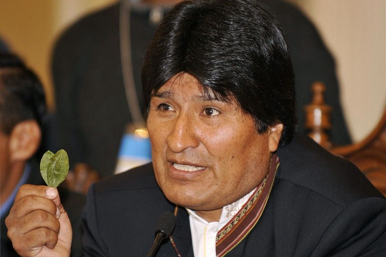 <p>Evo Morales holding coca leaves. He's defended Bolivians' right to cultivate the plant.</p>