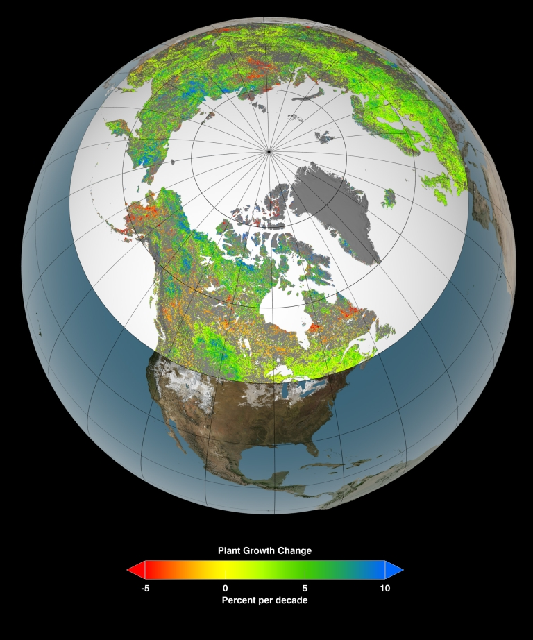 <p>New satellite images from NASA's Goddard Space Flight Center show that climate change is lengthening growing seasons, allowing forests and crops to grow in northern latitudes.</p>