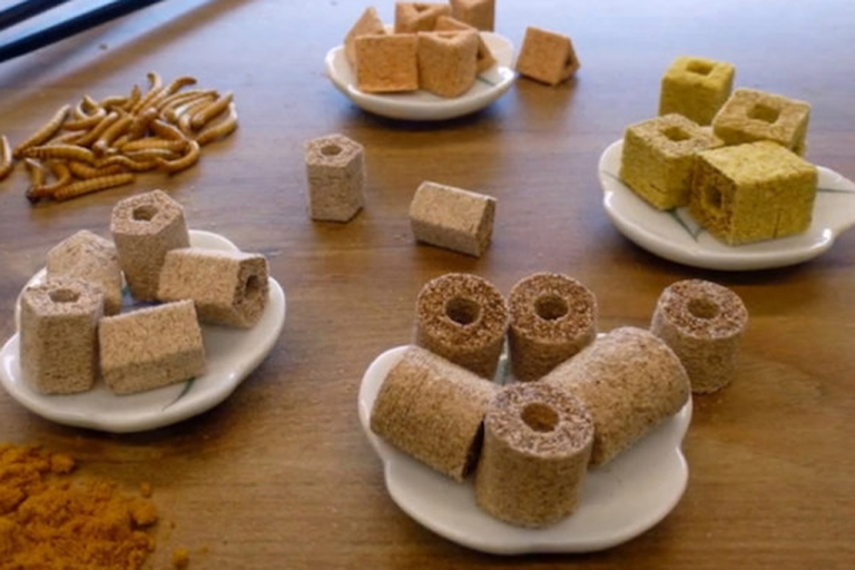 <p>Bon appetite! This photo shows food made with a 3-D printer using meal worms.</p>