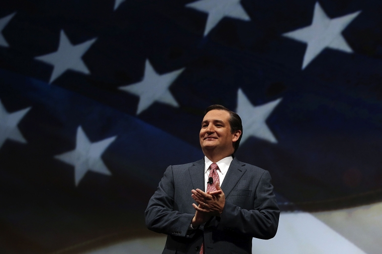 <p>Sen. Ted Cruz (R-TX) speaks during the 2013 NRA Leadership Forum at the George R. Brown Convention Center on May 3, 2013 in Houston.</p>