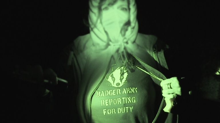 <p>A debate over badgers and bovines has gotten ugly in rural England.</p>