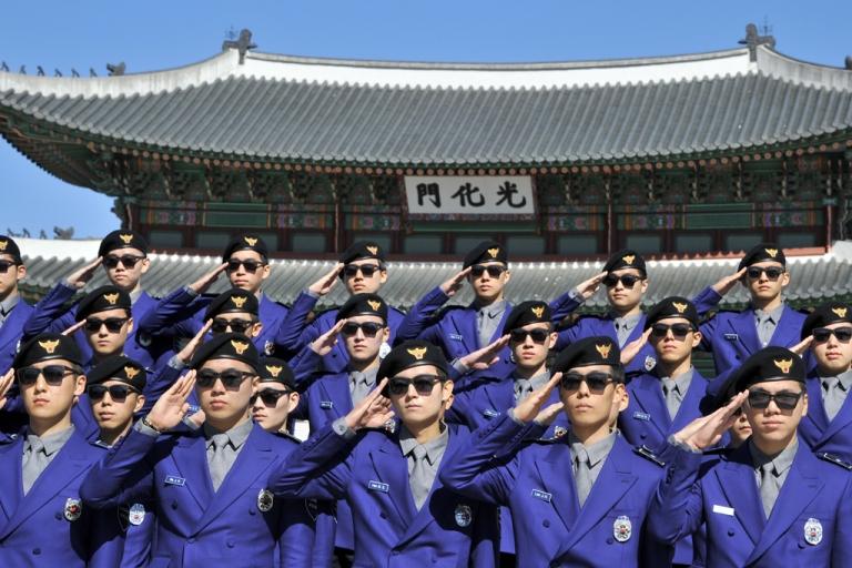 <p>South Korean