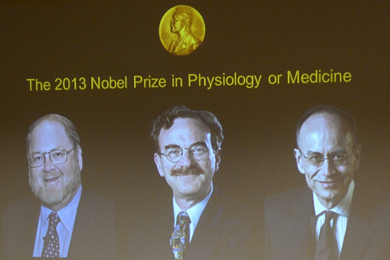 <p>A screen displays photos of (LtoR) James E. Rothman from the US, Randy W. Schekman from the US and Thomas C. Suedhof from Germany, all joined winners of the Medicine Nobel Prize, at a press conference to announce the laureates the 2013 Nobel Prize in Physiology or Medicine on October 7, 2013.</p>