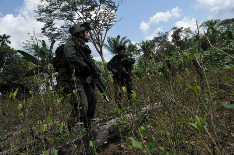 <p>Anti-narcotics police officers walk across a coca plantation on their way to blow up a lab for processing cocaine base from the Revolutionary Armed Forces of Colombia (FARC) in the municipality of Puerto Concordia, Meta department, Colombia, on January 25, 2011.</p>