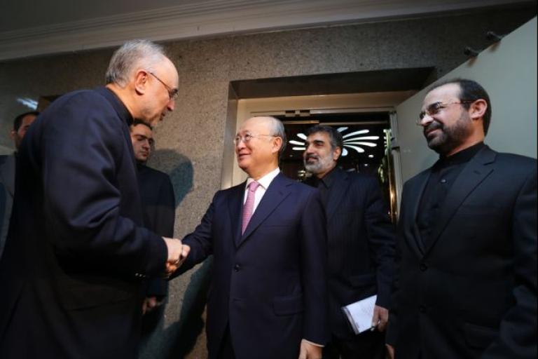 <p>Head of Iran's Atomic Energy Organisation Ali Akbar Salehi (L) welcomes International Atomic Energy Agency (IAEA) Director General Yukiya Amano (C), prior to their meeting in Tehran on November 11, 2013.</p>