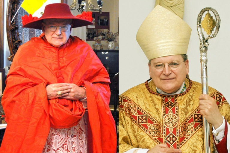 <p>Cardinal Raymond Leo Burke</p>