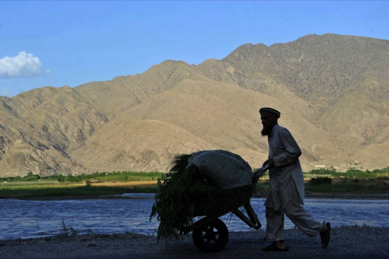 <p>Only about 15 percent of Afghanistan's land, mostly in scattered valleys, is suitable for farming. About 6 percent of the land is actually cultivated.</p>