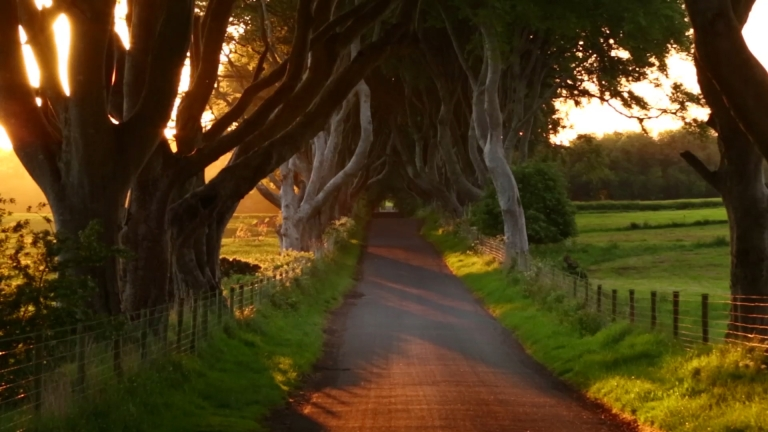 <p>The real-life site of Kingsroad from Game of Thrones lies in Northern Ireland.</p>