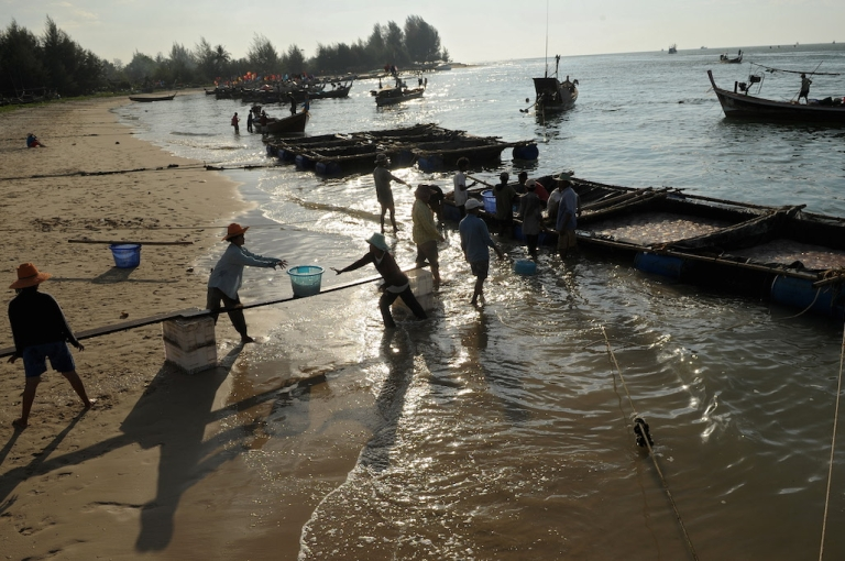 <p>Migrant workers from Myanmar carry baskets of jellyfish ashore at Ban Nam Khem, on the country's western Andaman Coast, in 2009. Although they play a key role in Thailand's economy, migrants are now being targeted by the ruling junta.</p>