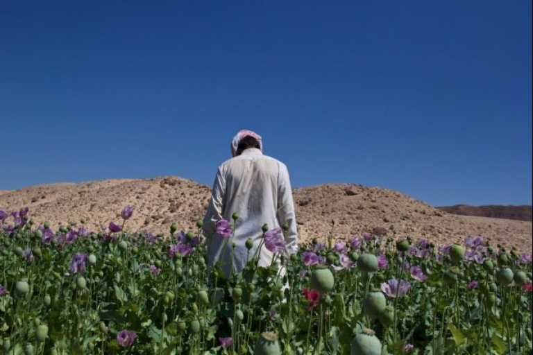 <p><span>Mohamed, 26, used to take tourists on week-long safaris into the South Sinai mountains but now grows opium to make a living.</span></p>