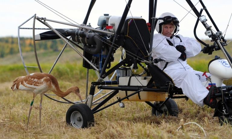 <p>Russian President Vladimir Putin glares at a crane as he takes part in a scientific experiment as part of the 'Flight of Hope' on on Sept. 5, 2012. The project will help preserve a rare species of cranes in the Jamalo-Nentsky region. Putin made three flights - the first to learn the process, and two others with the birds.</p>