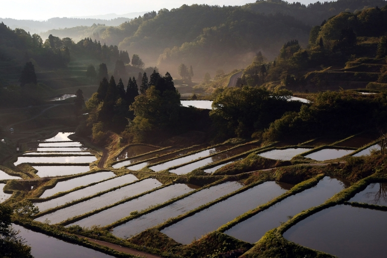 <p>Rice terraces are seen at Matsudai Tanada region in Niigata, Japan. May 13, 2008.</p>
