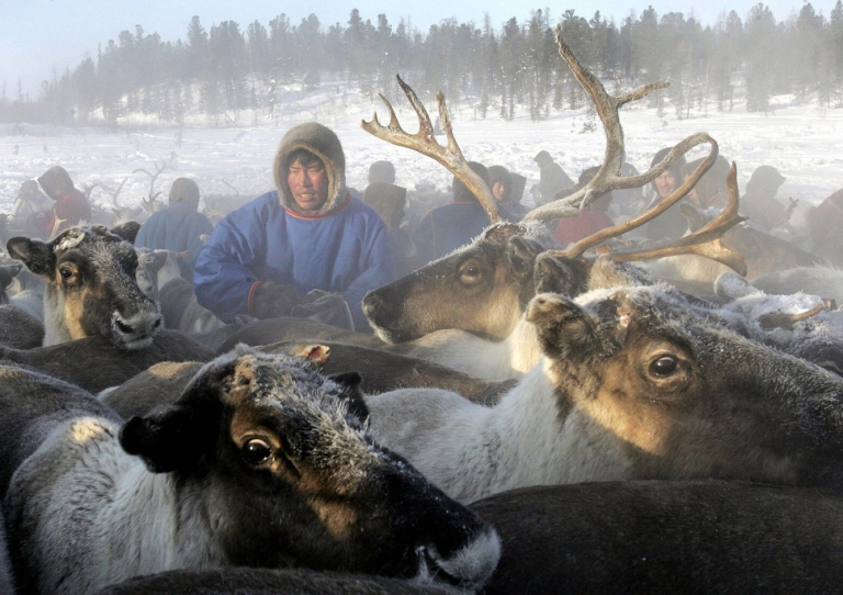 <p>Reindeer herders in the remote corner of northern Siberia stumbled upon the giant crater.</p>