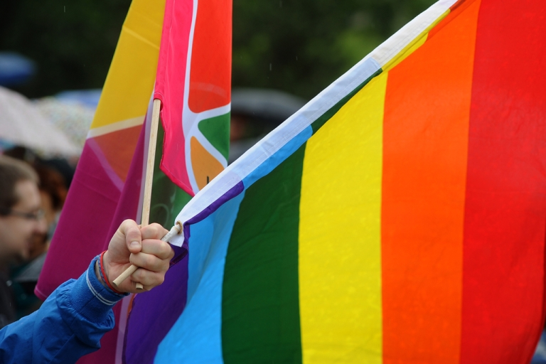 <p>A man holds rainbow flags during the pride parade in Bratislava on June 9,2012.</p>
