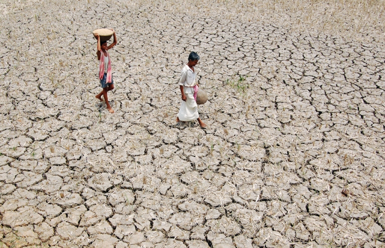 <p>An Indian farmer and his son walk over their parched paddy field on the outskirts of Agartala. May 14, 2009.</p>