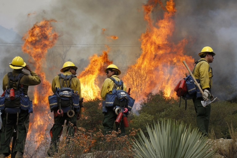 <p>US Forest Service firefighters stand near flames at the Williams fire in the Angeles National Forest on September 4, 2012 north of Glendora, California.</p>