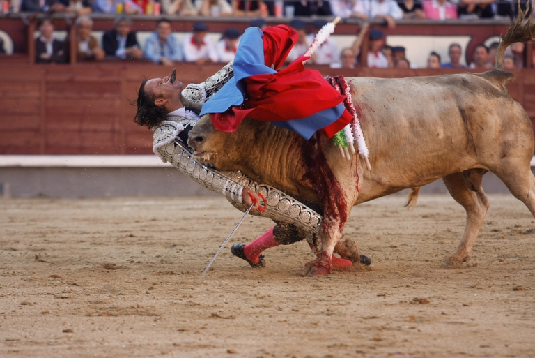 <p>Spanish Bullfighter Julio Aparicio is gored by a bull during a bulfight of the San Isidro Feria at the Las Ventas bullring in Madrid, on May 21, 2010.</p>