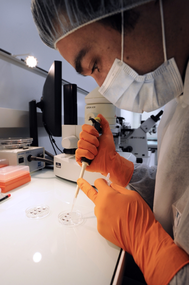 <p>Fabien Danjan of CNRS (French Reseach Institut Center) introduces embryonic stem cells  in a mouse embryo to set a genetically modified line, on February 9, 2012, at the Centre d'Immunologie de Marseille-Luminy (CIML).</p>
