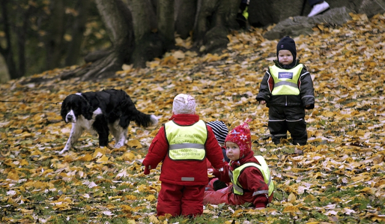 <p>Swedish children from a kindergarden wear their obligatory traffic safety vests as they play in a Stockholm park. At the
