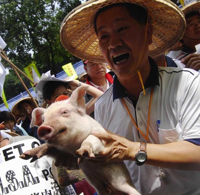 <p>A Taiwanese pig farmer displays a piglet during a demonstration outside health department headquarters in Taiwan.</p>