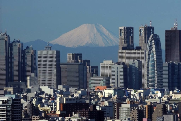 <p>Buildings in Tokyo have to be built to strict regulations to withstand earthquakes, but a large tremor could still cause serious damage.</p>