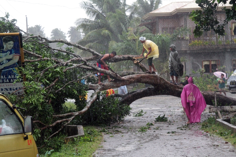 <p>Workers clear a road with a fallen tree after Typhoon Bopha hit the city of Tagum, Davao del Norter province, on the southern island of Mindanao on December 4, 2012. Typhoon Bopha smashed into the southern Philippines early December 4, as more than 40,000 people crammed into shelters to escape the onslaught of the strongest cyclone to hit the country this year.</p>