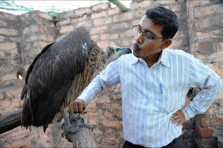 <p>Founder of the Asha Foundation animal shelter and hospital Harmesh Bhatt plays with Maya, an Indian vulture, at Hathijan village, some 20 kms from Ahmedabad, on January 16, 2010.</p>