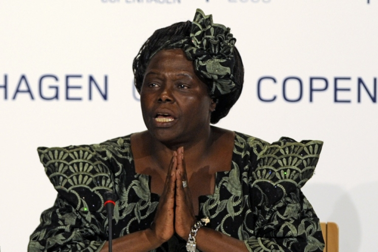 <p>Nobel Peace Prize Laureate Wangari Maathai attending a meeting at the Bella center of Copenhagen at the COP15 UN Climate Change Conference in 2009.</p>