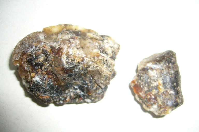 <p>Two chunks of ambergris, or solidified whale vomit, are pictured above.</p>